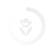 Thành Công - xinhtuoi.online