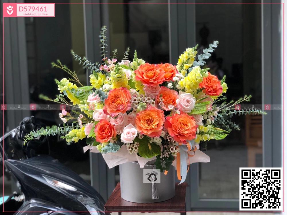 Hop1500C - D579461 - xinhtuoi.online