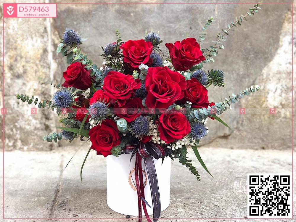 Hop1500D - D579463 - xinhtuoi.online