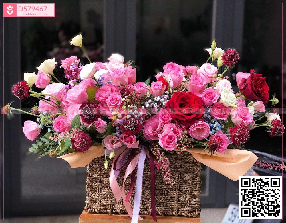 Gio2000 - D579467 - xinhtuoi.online
