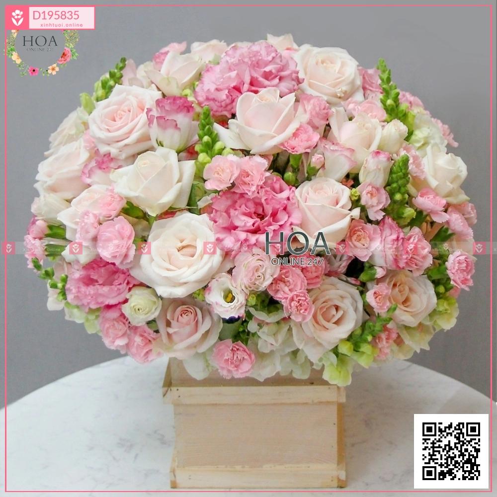My happiness - D195835 - xinhtuoi.online