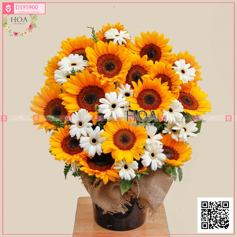 Thành tựu - D195900 - xinhtuoi.online