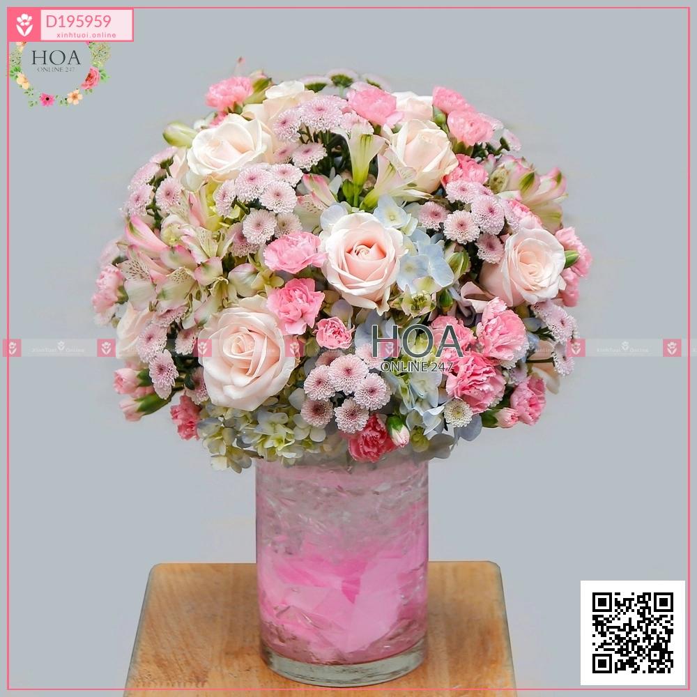 Thu về - D195959 - xinhtuoi.online