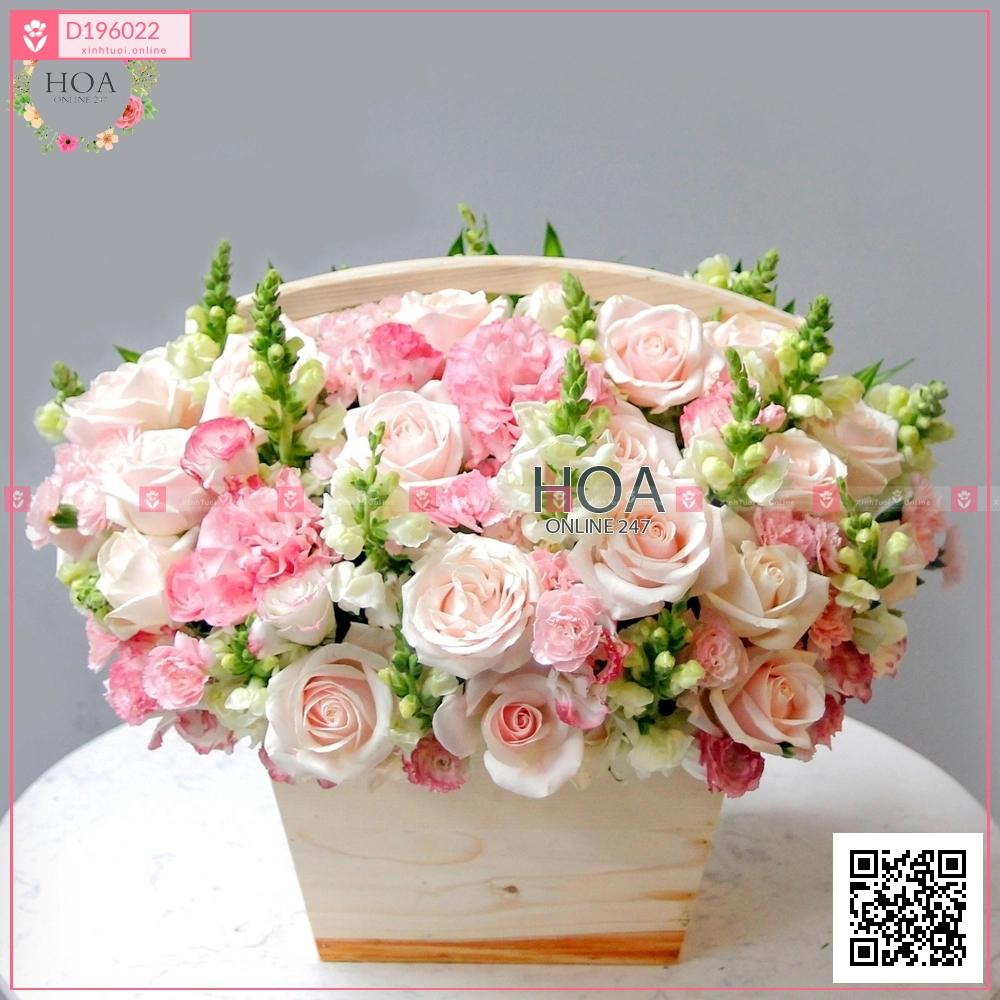 Lẵng Hoa Chúc Mừng - D196022 - xinhtuoi.online