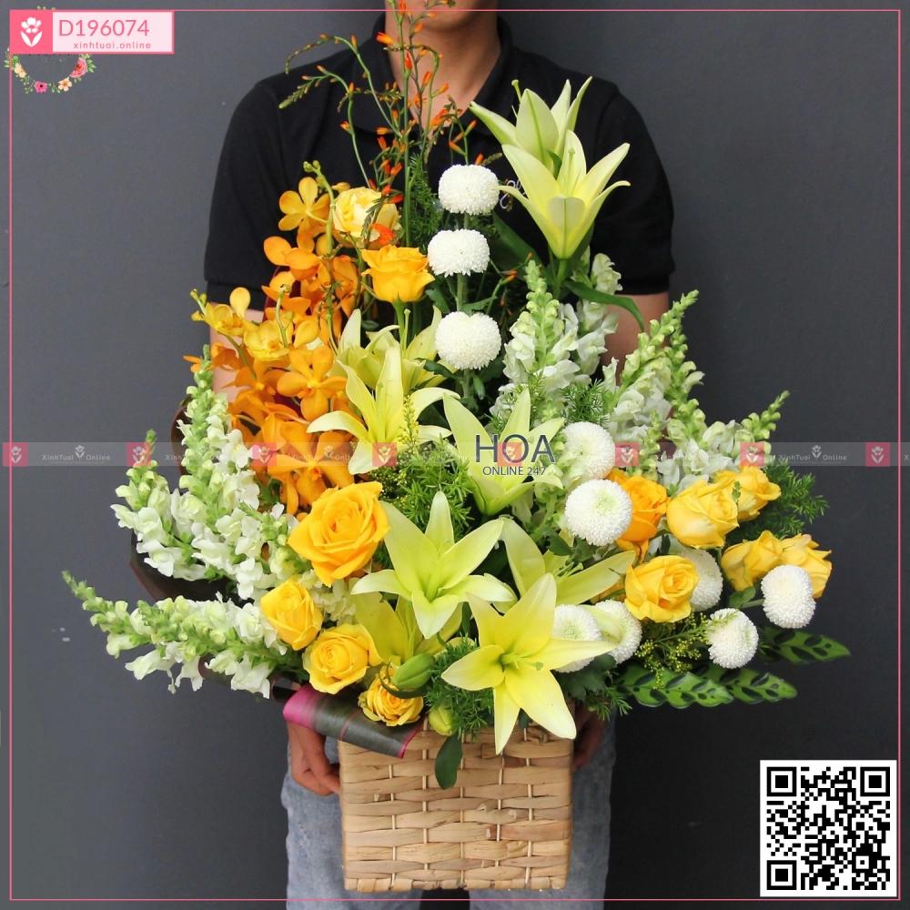 Thành công - D196074 - xinhtuoi.online