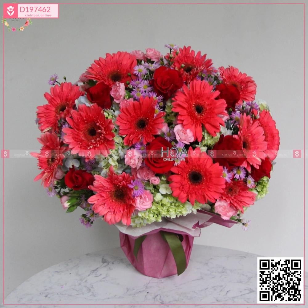 Dreamer - D197462 - xinhtuoi.online