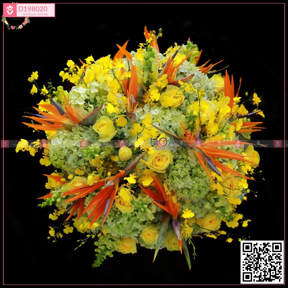 Chậu Hoa Chúc Mừng - D198020 - xinhtuoi.online