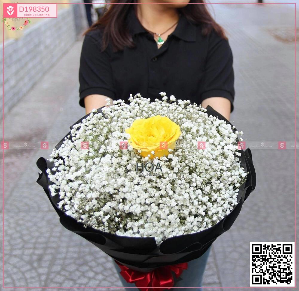 Lãng mạng - D198350 - xinhtuoi.online