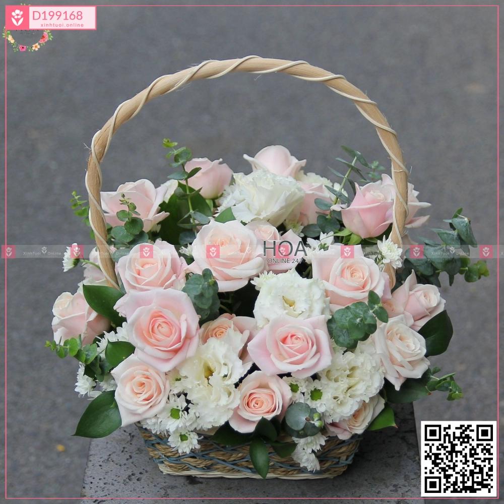Gắn Kết - D199168 - xinhtuoi.online