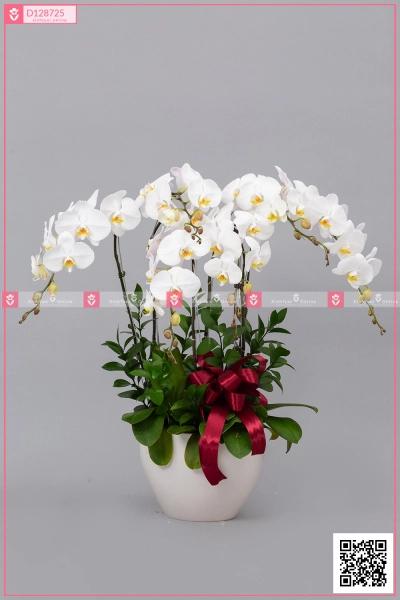 Thanh Tao - D128725 - xinhtuoi.online