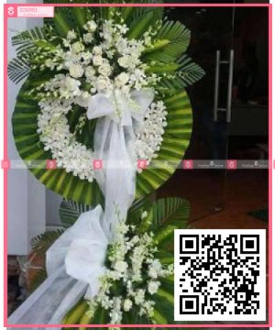lan trắng, hồng trắng - xinhtuoi.online