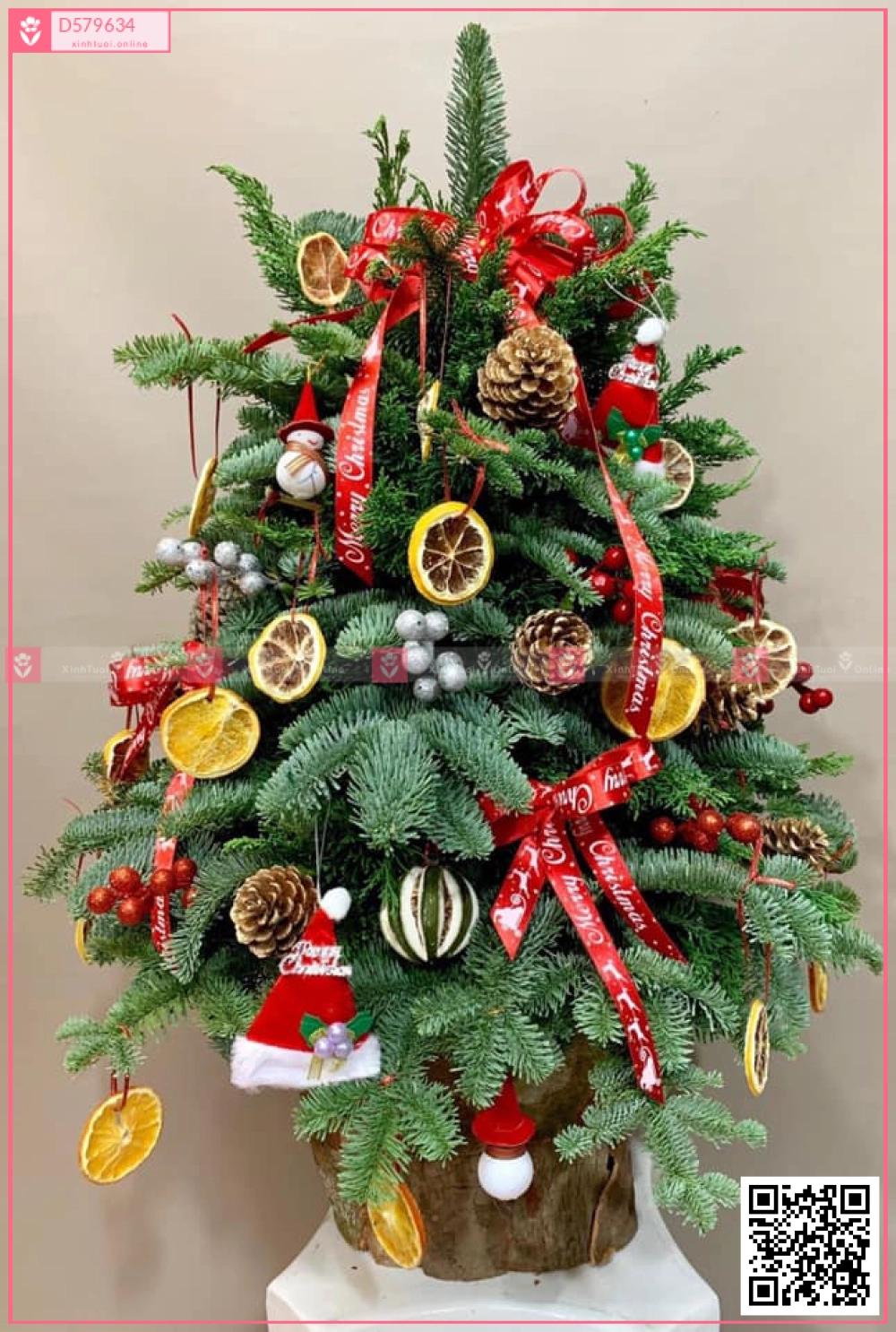 Santa claus - D579634 - xinhtuoi.online